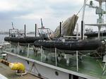 巡視船-5