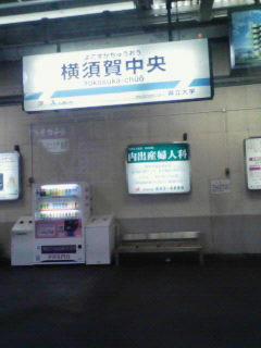NEC_1220.JPG