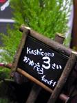 kashicoro3.JPG