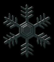 snow-bk2.jpg