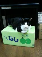 2008.09.09.01.JPG