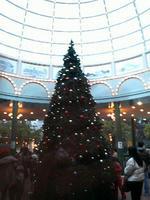 2008.12.13.11.JPG