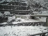2010.12.31.001.JPG