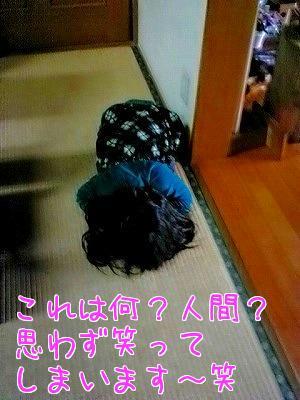 kNHB__wP.jpg