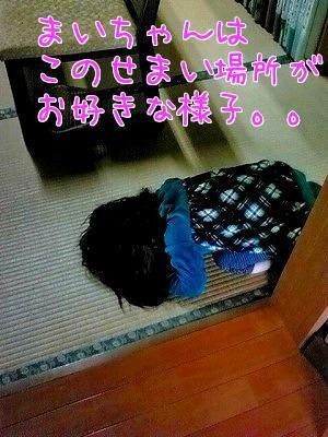 bXanPn9N.jpg