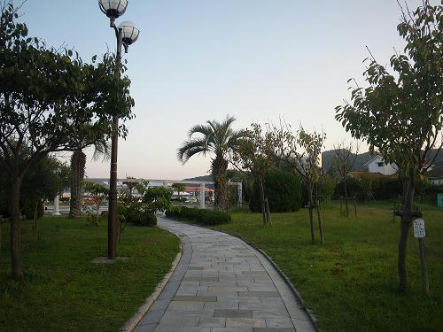 IMGP5542s.jpg