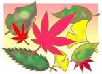 紅葉・黄葉・落葉・もみじ・紅葉シーズン・紅葉狩り・秋