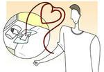 献血・全血献血・成分献血・献血者・献血奉仕・献血制度・全血輸血・輸血