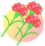 母の日・カーネーション・赤いカーネーション・母の日プレゼント・母の日ギフト・母への感謝