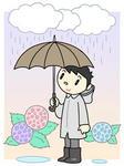 入梅・梅雨・梅雨入り・梅雨時・雨・雨傘・紫陽花・アジサイ・あじさい