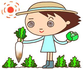 農業・農業体験・菜園・畑・野菜・収穫・野外授業