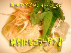2008_B40.jpg