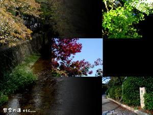 2008_B54.jpg