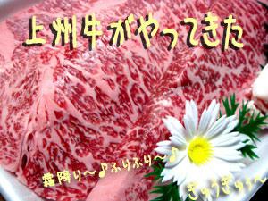 2009_B26.jpg