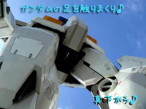 2009_B31.jpg