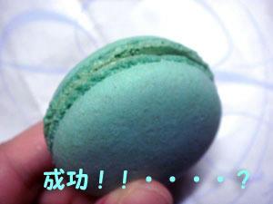 2009_B60.jpg