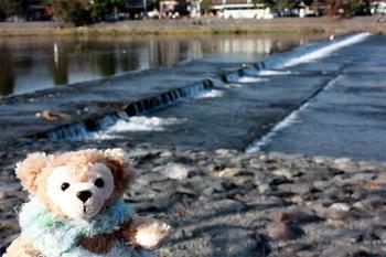川辺は涼しいの。