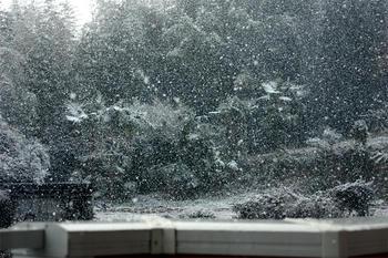 瞬間、大雪。