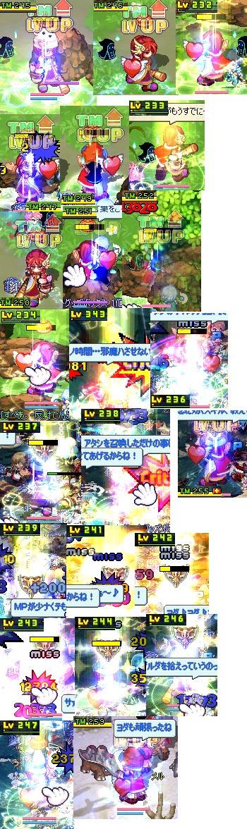 yuzu305.jpg