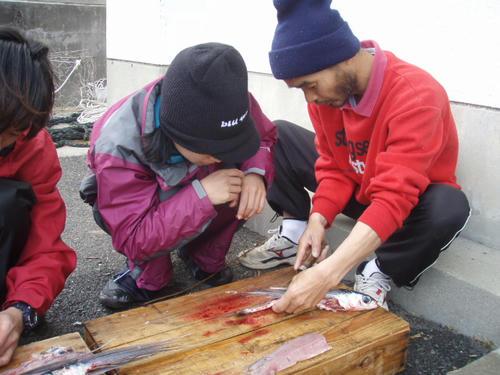 漁師さん直々にさばき方を教わる。