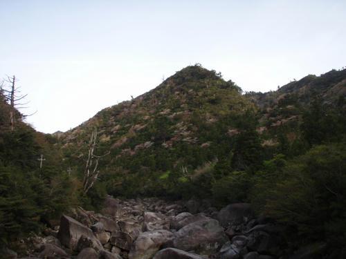 早朝の小杉谷橋より。