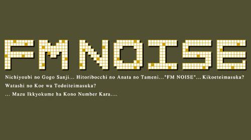FM NOISE