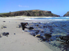 merbourne.beach.jpg
