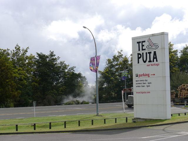 tepuia_gate.jpg