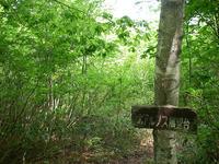 Kogumayama04.jpg