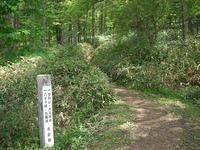 Tateshina03.jpg