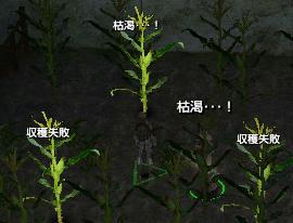 枯渇・・・!