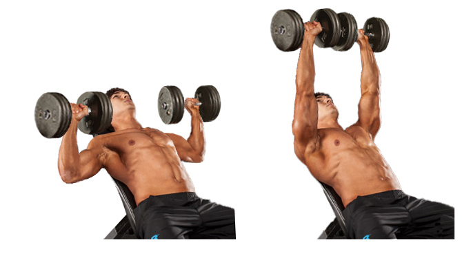 Dumbbell bench press 2