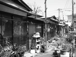 090513-roji.jpg