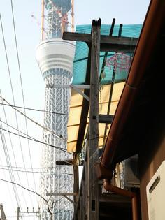 110111-kyojima-3.jpg