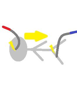 通電センサーが銀被災者を襲う!(被災者は旧型のものです)