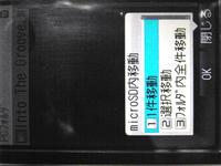 R0010628.JPG