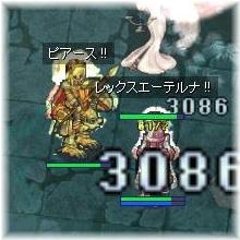 きんきんの騎士団
