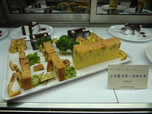 13_danchi_plate_model.jpg