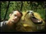 ライオン 動物 動画 衝撃