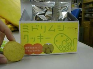 CIMG0801.blog.JPG