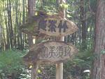 久須見林道