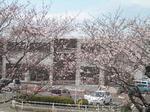 岐阜大学付属動物病院