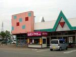 090608shirotai1.jpg