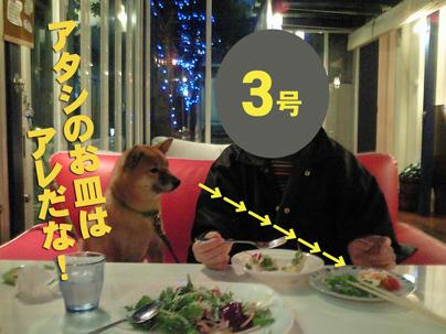 NEC_0072-web.jpg