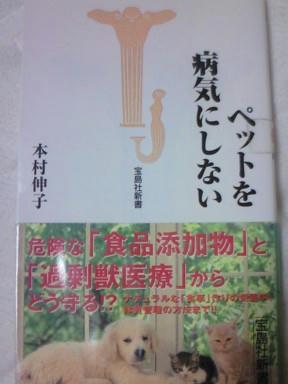 web-NEC_0016.JPG