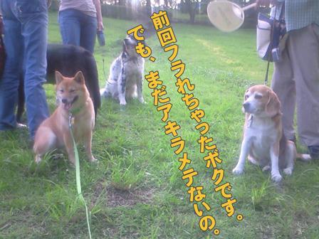 NEC_0044-web.jpg