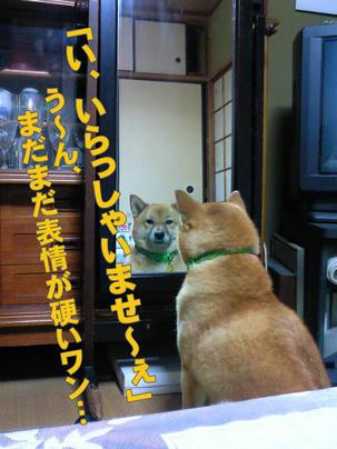 NEC_0064-web.jpg