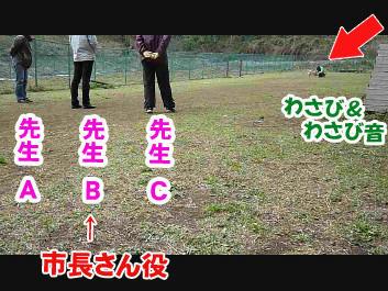 b01c662b.jpeg