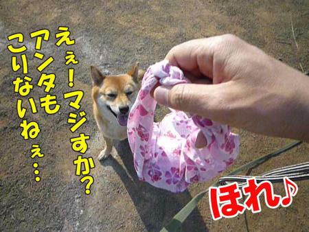 web-P1080838.jpg