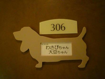 web-P1000903.JPG